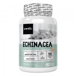 Echinacea til Hunde & Katte