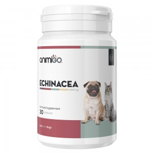 Echinacea capsules for cats and dogs - 30 Capsules